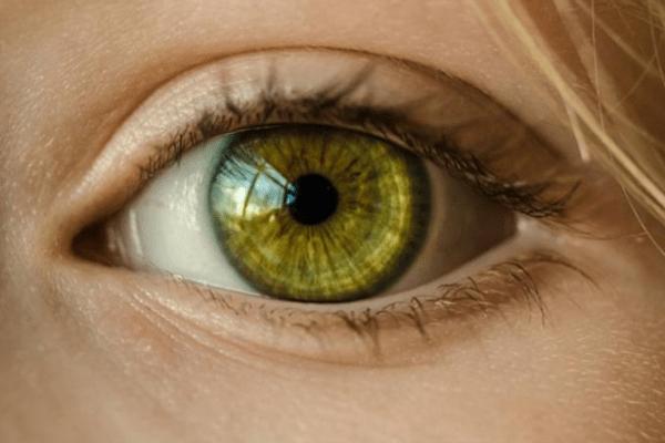 Tuberculose latente pode afetar retina