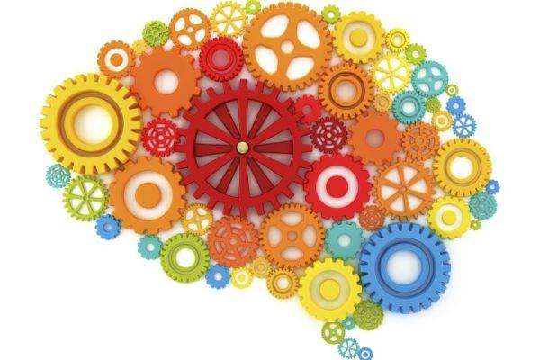 O cérebro também precisa de ginástica