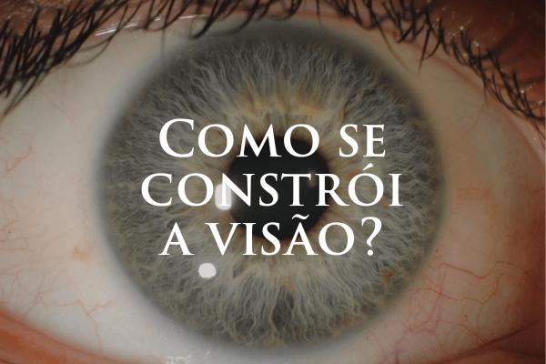 Como se constrói a visão?
